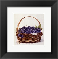Framed Basket Of Blackberries