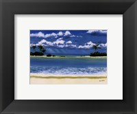 Framed Caribbean Palms
