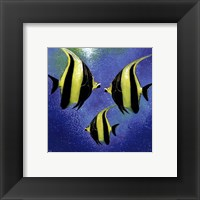 Framed Fish A Go Go l