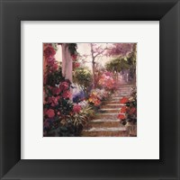 Framed Rose Garden Steps