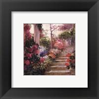 Framed Rose Garden Steps