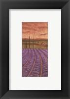 Framed Soleil De Provence II