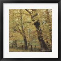Framed English Countryside II