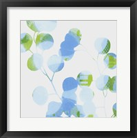 Framed Blue Plums I