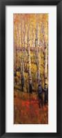 Vivid Birch Forest I Framed Print