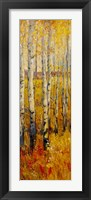 Vivid Birch Forest II Framed Print
