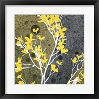 Framed Moon Flowers II
