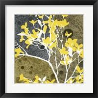 Framed Moon Flowers III