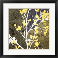 Framed Moon Flowers IV