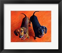 Framed Double Dachsies