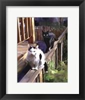 Framed Cats Fencing