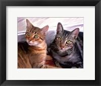 Framed Sweepo & Tony