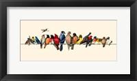 Framed Bird Menagerie III