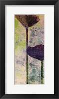Framed Quad Poppy II
