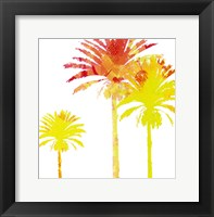 Framed Sunny Palm I