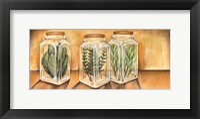 Framed Spice Jars I