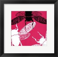 Framed Pop Fly II