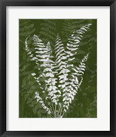 Framed Jewel Ferns I