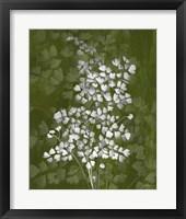Framed Jewel Ferns III