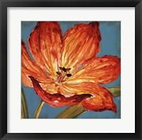 Framed Flame Tulip I