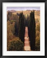 Framed Journey