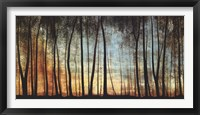 Framed Golden Forest