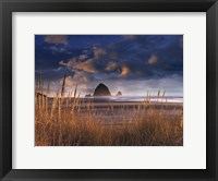 Framed View of Beauty