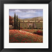 Framed Tuscan Cypress I