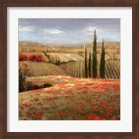 Framed Tuscan Cypress II