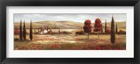 Framed Tuscan Poppies II