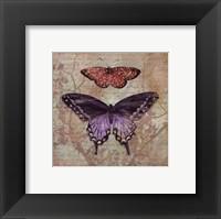 Framed Vintage Butterflies IV - petite