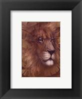 Framed Safari Lion