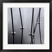 Four Reeds Framed Print