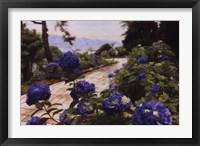 Framed Hydrangea Path