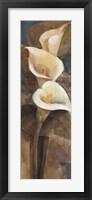 Calla Lily Trio Panel Framed Print