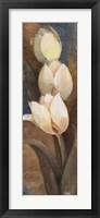 Tulip Trio Panel Framed Print