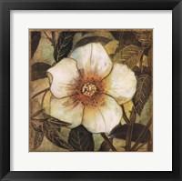 Framed White Magnolia I
