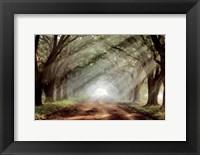 Framed Evergreen Plantation A