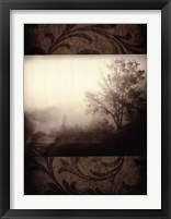 Framed Early Morning Fog