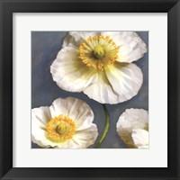 Framed Poppy Parfait II
