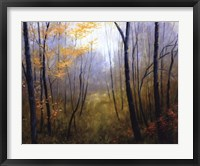 Framed Woodland Mist