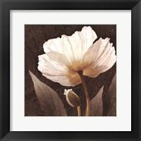 Framed Paisley Poppy I