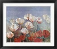 Framed Blushing Poppies