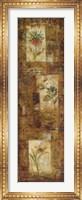 Framed Botanist's Journal II
