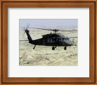 Framed UH-60 Black Hawk United States Army