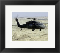 Framed UH-60 Black Hawk United States Army