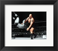 Framed Big Show 2010 Spotlight Action