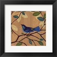 Framed Songbird IV