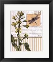 Framed Botanical Collage II - mini