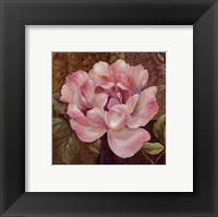 Framed Esperance Rose - petite